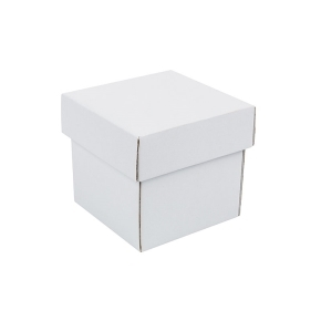Darčeková krabička s vekom 100x100x100/35 mm, bielo/biela