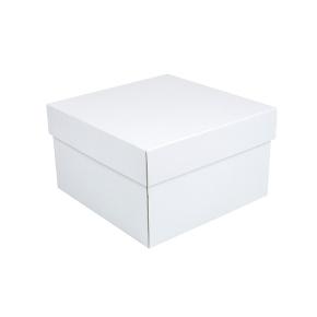 Úložná krabica s vekom 250x250x150 mm, bielo-biela