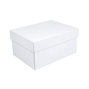 Úložná krabica s vekom 300x215x150 mm, bielo-biela