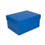 0e7639825d345 Úložná krabica s vekom 300x215x150 mm, modrá matná