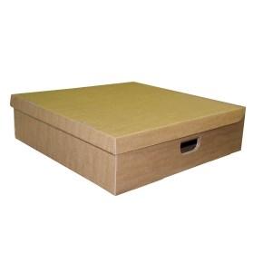 Úložná krabica s vekom 450 x 450 x 180 mm